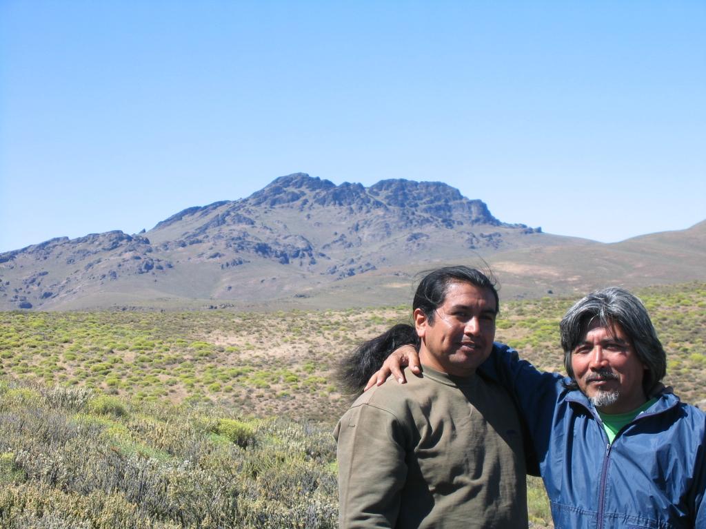 Les Mapuches