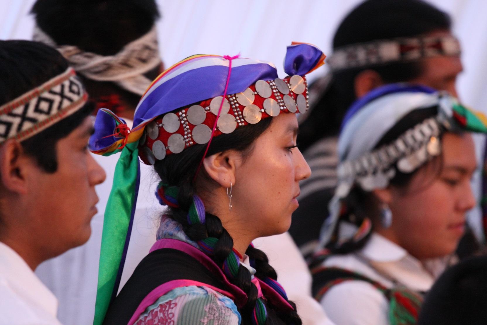 Avvicinadoci ai Mapuche