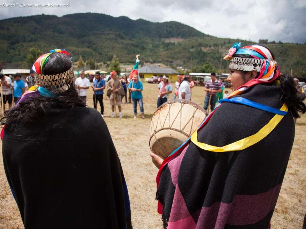 Nahuelbuta – Arauco